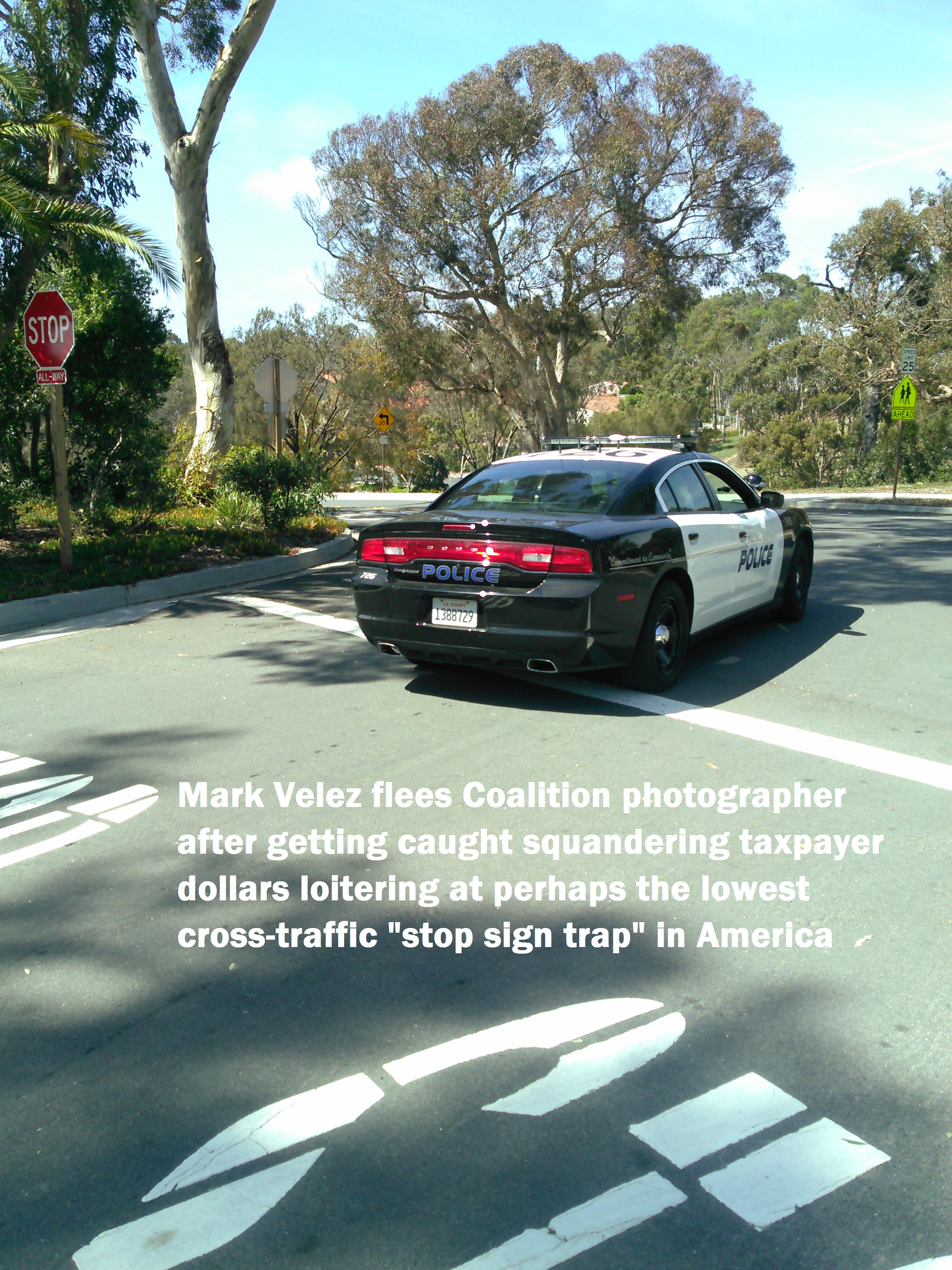 Captain Hunch? Mark Velez, supported one link up the chain of command by Chief Jeff Kepley, relaxed in the shade at this highly frequently PVEPD loitering spot until chased off by a disgusted PVE resident (lower PV Drive West and Via Almar, one convenient block from station)